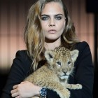Cara Delevingne Models Live With An Actual Lion