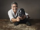 George Clooney Cuddles Up With His Other Half In The Latest OMEGA Campaign...