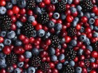 Berries Are Big Business And It Looks Like We Can't Get Enough Of Them
